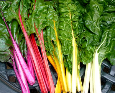 3rd June: Talk on Vegan Nutrition