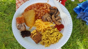 Big Veggie Brunch plate