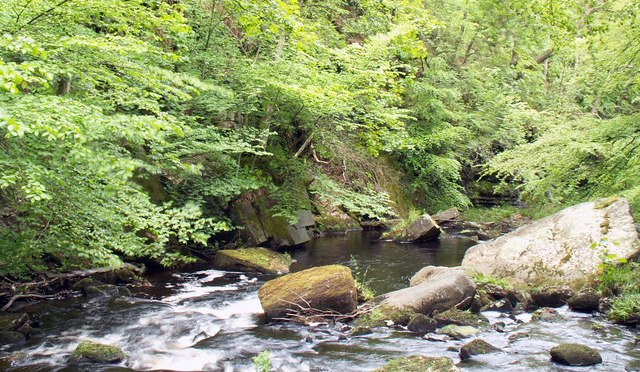 12 Aug: Picnic at Hardcastle Crags, #HebdenBridge