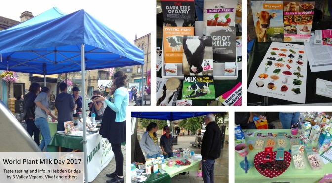 World Plant Milk Day 2017 stall in Hebden Bridge