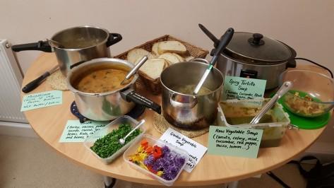 Cowspiracy soup pot luck