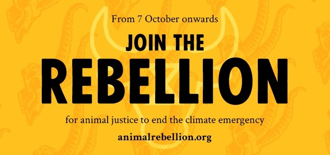 Animal Rebellion prepares for London rebellion from 7 October