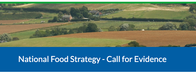 National Food Strategy for England: have your say in the consultation