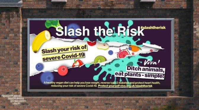 Poster for Viva slash the risk
